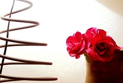 Besos-rosas de domingo (Helena de Riquer) Tags: light roses luz topf25 interestingness topf50 topf75 interior sony sunday rosas topf100 espiral lampada 2010 lmpara llum carlzeiss 100faves sonydsch20 helenaderiquer