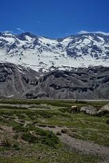 Cajon Del Maipo (r47z @ Cris Chen ) Tags: chile mountains travels cajondelmaipo rx100m3
