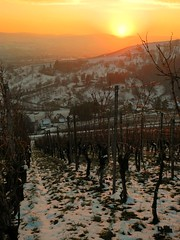 Before the night (almresi1) Tags: schnee sunset snow sonnenuntergang vineyards reben weinberge remstal