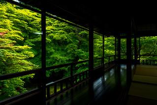 瑠璃光院 / Rurikou-in Komyo-ji Temple
