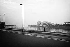 Solitude (Pat Kelleher) Tags: blackandwhite bw black blanco singapore solitude schwarzweiss 黑白色 schwarzundweiss patkelleher patkelleherphotography