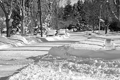 Day After Storm Jonas 10 - Street View (George - with over 2 mil views - THANKS) Tags: winter light shadow bw usa snow monochrome us blackwhite newjersey unitedstatesofamerica snowstorm january mercercounty ewing winterstorm winterscene monochromephotography snowcoveredstreet acdseepro photogeorge nikond750 winterstormjonas
