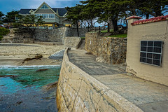 DSC00473--Pacific Grove, CA (Lance & Cromwell back from a Road Trip) Tags: california sony montereybay montereycounty pacificgrove westcoast loverspoint montereypeninsula sonyalpha