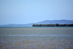 DSC_0008os 1000 (LoxPix2) Tags: bird pelicans water landscape bay boat wildlife smoke brisbane catamaran trimaran redland loxpix