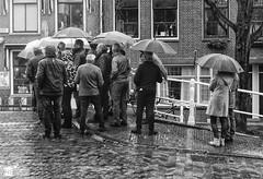 The umbrella club (Robert Stienstra Photography) Tags: street people urban blackandwhite monochrome umbrella shots streetphotography streetlife rainy umbrellas streetphotos blackandwhitephotography monochromephotography streetpics urbanpeople sigma1530mm nikond7000 nikond7k