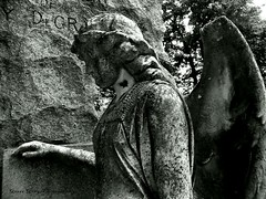 Forest Hill Cemetery (Gerri Gray Photography) Tags: blackandwhite ny newyork cemetery grave graveyard statue stone angel religious victorian upstate graves gravestone winged tombstones utica gravemarker taphophilia