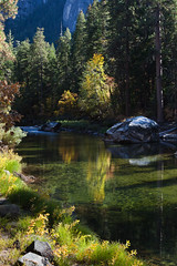 Merced River Calm in Fall (Jeffrey Sullivan) Tags: california park travel autumn usa fall jeff nature canon landscape photography photo waterfall october national yosemite sullivan mercedriver 2011 5dmarkii