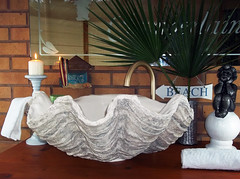 Grey Giant Clam Shell SINK 21 (LittleGems AR) Tags: ocean sea sculpture sun beach home statue giant bathroom shower aquarium soap sand bath sink natural contemporary unique decorative shell craft style toilet towel clam basin special shampoo taps wash ornament gift seashell pearl nautical reef decor spa luxury opulent fossils oneoff clamshell mollusks cloakroom bespoke tridacna sculpt crafted gigas facetowel