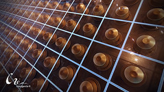40/366 (criss.garcia) Tags: texture textura coffee caf pattern cristinagarcia crissgarcia
