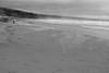 Blowing Sand,Sands of St Cyrus,St Cyrus National Nature Reserve_jan 16_720 (Alan Longmuir.) Tags: monochrome aberdeenshire grampian blowingsand stcyrus shiftingsands sandsofstcyrus stcyrusnationalnaturereserve