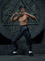 P1294607 (KVN Yeh) Tags: toy toys action figure brucelee bandai shfiguarts