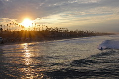 Catch a Wave (KC Mike D.) Tags: california light sea usa tree beach sunrise surf waves pacific surfer wave palm southern socal shore rays burst sunrays