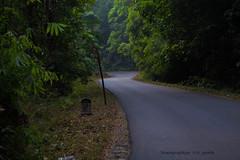 Makutta (rkgowda22) Tags: water river nikon kerala greenery coorg madikeri virajpet karntaka nagarahole bramhagiri reserveforest brahamgiri