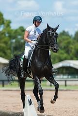 160212_Clarendon_PStG_3677.jpg (FranzVenhaus) Tags: horses sydney australia riding newsouthwales athletes aus equestrian supporters riders officials dressage spectatorsvolunteers