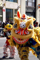 Lion dance (Billy Kuan-yin Chen) Tags: nyc newyorkcity newyork asian chinese parade queens falungong lunarnewyear liondance flushing asianculture