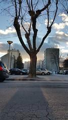 #gap #guirlandes #hiver #lumire #soleil #hauteshalpes #sun #winter (auroresb091) Tags: winter sun soleil lumire hiver gap guirlandes hauteshalpes