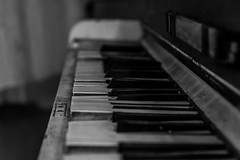 The Old Piano (Mat Viv) Tags: blackandwhite italy music blur halloween monochrome canon eos rebel bokeh background piano sigma blurred lucca outoffocus depthoffield tuscany musica pianokeys sigmalens 700d canon700d canoneos700d t5i sigma1750mmf28 canont5i canoneost5i