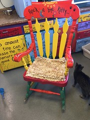 "The famous rocking chair • <a style=""font-size:0.8em;"" href=""http://www.flickr.com/photos/72892197@N03/25228005675/"" target=""_blank"">View on Flickr</a>"