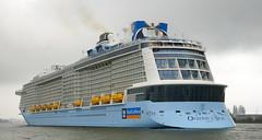 Ovation of the Seas (kees torn) Tags: rotterdam kopvanzuid nieuwemaas hollandamerikakade cruiseschepen ovationoftheseas denieuwemaze