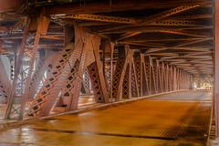 2Y2A5879.jpg (RCARCARCA) Tags: bridge urban chicago metal canon river jungle urbanjungle 2470l twotier 5diii
