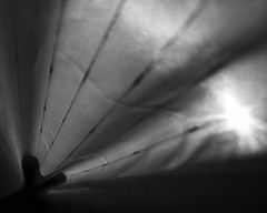 Curtain Project (52weeks2016#16 - Leading Lines) (ponzoosa) Tags: light shadow bw white black cortina lines sombra bn homemade curtains leading lineas guided 52weeks