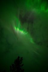 Finland 2016 (Marianne Zumbrunn) Tags: finland nikon finnland lappland corona astrophotography aurora lapland f28 northernlights auroraborealis 2016 d610 northernlight 14mm samyang astrofotografie samyang14mm nikond610