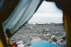 000083950016 (Albina Shaimuratova) Tags: trip travel sea film birds rock mju wine crimea blacksea inkerman