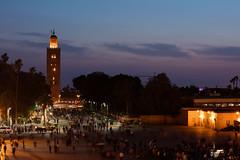 Koutoubia Minaret, Marrakech (Daniel Trim) Tags: africa city travel red square minaret main north kingdom el mosque morocco western marrakech marrakesh northern koutoubia fna jemaa djemaa