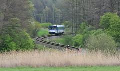 810 292 u Horních Heřmanic na trati Lipová-lázně - Javorník
