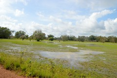 DSC_0537 (Megansjester) Tags: green wet water landscape view australia tropical northern territory australie