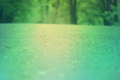 blur-dreamy-texture-texturepalace-48 (texturepalace) Tags: blur color leaves cc creativecommons dreamtextures texturepalace blurtextures