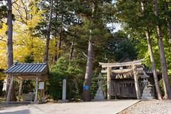(GenJapan1986) Tags: travel japan island shrine  niigata    2015 awashima   nikond610