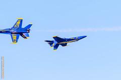 Blue Angels (Edi Bhler) Tags: sanfrancisco california usa airplane fighter unitedstates aircraft flugzeug blueangels fleetweek kalifornien militr fa18 militaryaircraft militrflugzeug nikond810 mcdonnelldouglasfa18chornet luftfahrzeuge flightdemonstrationsquadron 200500mmf56 flugstaffeln outfleetweek