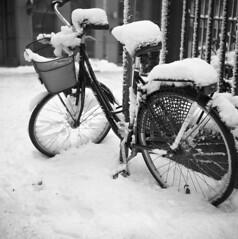 Bicycle (rotabaga) Tags: blackandwhite bw göteborg diy lomo sweden gothenburg sverige tmax400 lubitel166 svartvitt r09 bwfp
