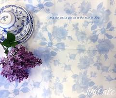 Saint Colette June Roses in blueberry linen cotton (lilyoake) Tags: roses saint june pastel colette blueandwhite shabbychic