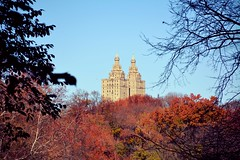 Autumn - Central Park (Billy W Martins ) Tags: park nyc newyorkcity autumn trees ny newyork west building tree nikon centralpark central upperwestside centralparkwest d7100