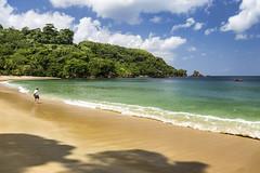 Rainforest Beach (LifeLover4) Tags: beach clouds island sand rainforest tropical caribbean tt tobago circularpolarizer westindies trinidadandtobago lifelover4 stickneydesign