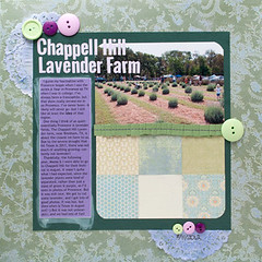 Chappell Hill Lavender Farm (artandcatloverinjville) Tags: load16