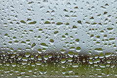 Regndråber, Ry 2016 (Appaz Photography☯) Tags: denmark dråber jylland ry farm farmliving appazphotography