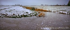 Groninger Landschap,Winter,Groningen,the Netherlands,Europe (Aheroy(2Busy)) Tags: winter ice landscape frozen ditch flat bevroren sneeuw groningen landschap sloot ijs groningerlandschap aheroy aheroyal