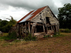 Maerdy (leavesandpuddles) Tags: abandoned barn timber decay farm farming herefordshire derelict deadwood ruraldecay corrugated decaying dereliction stmargarets timbered welshmarches collapsing abandonedbarn cloudbank bacton murdershack maerdy westherefordshire cruckwork