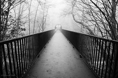 there's no one there (bluechameleon) Tags: bridge trees winter mist nature fog fence landscape still frost alone quiet empty branches traintracks eerie burnaby serene lonely barebranches barnetmarinepark bluechameleon artlibre sharonwish bluechameleonphotography