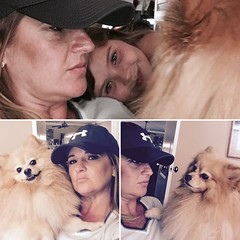 Tagged! There's a fluffy little PomPom who's 2nd birthday is around the corner. Time for a PomDate 2/19/16 #BeignetChrisdeenBeauregard (tammy anthony baker) Tags: beignet pomeranian nowork allplay tmabaker tammyanthonybaker