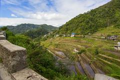 Ifugao Province (Ugo B0SS) Tags: landscape rice outdoor philippines terraces ricefields ifugao