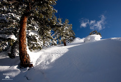 _XYZ1997 (Jason Hummel Photography) Tags: winter snow ski colorado skiing powder aspen aspenhighlands