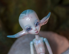Face-up comission (olesyagavr) Tags: doll chateau beatrice dollzone