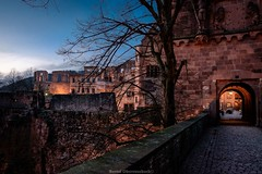 Schloss Heidelberg (bernd obervossbeck) Tags: castle evening abend nightshot ruin ruine mansion heidelberg schloss beleuchtung schlossheidelberg abendstimmung enlightment eveningmood berndobervossbeck fujixt1