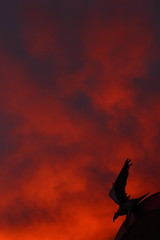Sunset 2 18 16 #07 (Az Skies Photography) Tags: school sunset red arizona sky orange cloud sun black silhouette rio yellow statue set skyline clouds canon skyscape eos rebel gold golden high hawk salmon az rico february 18 2016 arizonasky arizonasunset 21816 riorico rioricoaz t2i rioricohighschool hawkstatue canoneosrebelt2i eosrebelt2i arizonaskyscape 2182016 february182016