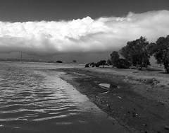 Storm Coming (Rand Luv'n Life) Tags: california blue trees blackandwhite storm heron monochrome birds clouds outdoors bay san great diego away vista mission ripples far mudflat odc
