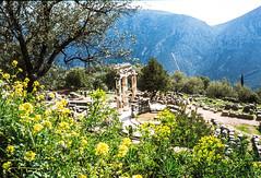 Slides Box 4 1978 Greece-64 (alh1) Tags: spring delphi greece 1978 slides transparencies copies tholos box4 agfact18film